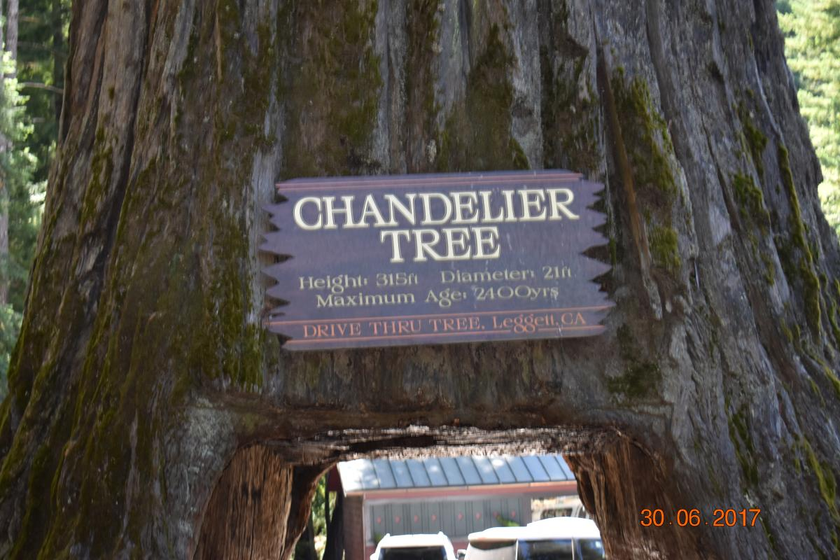 Oregon Trip Day 2, June 30, 2017 – Traveling with Justin
